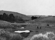 The current 5th green date unknown