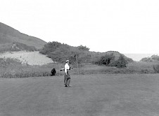The 11th green complete with grazing cow!